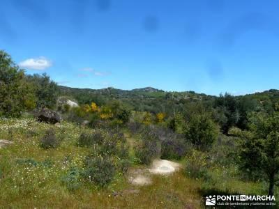 Piedra Escrita Diosa Diana; excursiones de senderismo; viajes otoño;muniellos